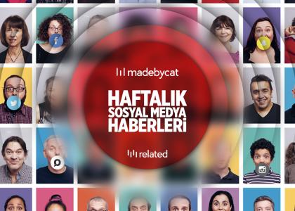 madebycat